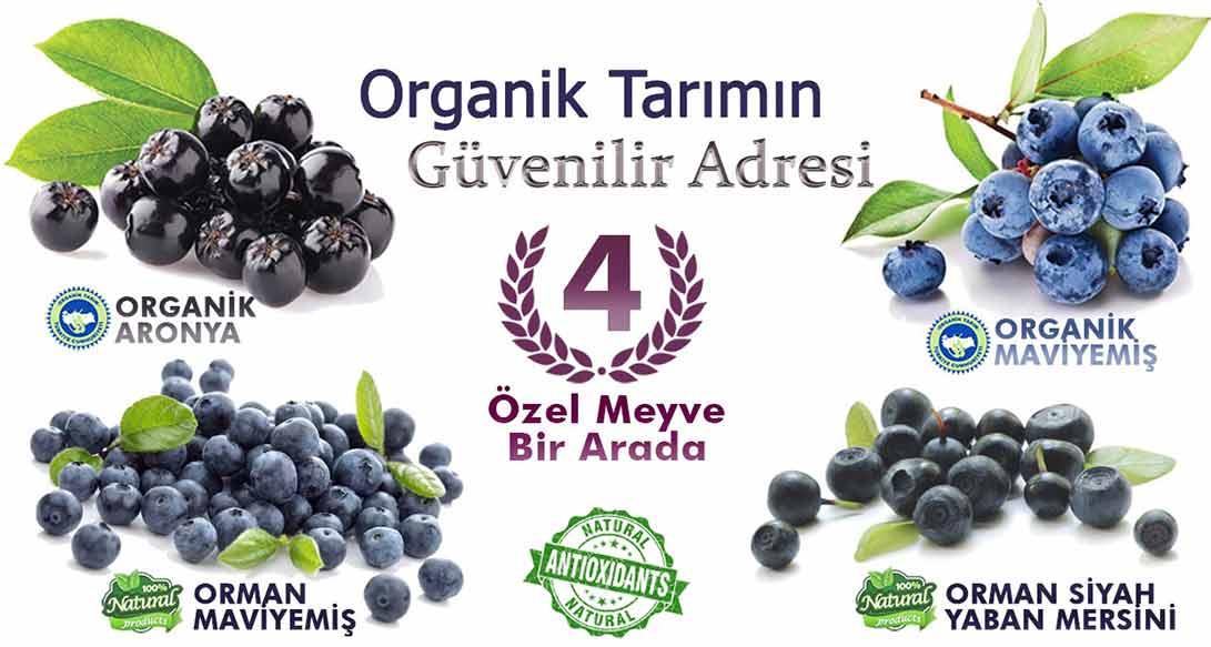 4 Ozel Meyve Birarada